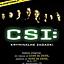Wciel się w detektywa. CSI: Kryminalne Zagadki